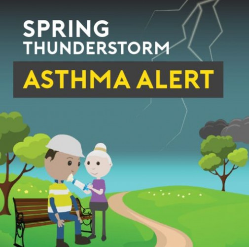 Important health warning for those with ASTHMA, HAYFEVER WITH WHEEZE or those needing to use VENTOLIN.